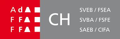 Logo FSEA